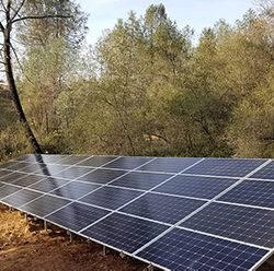 Preserving Trees in Solar Designs