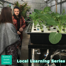 Greenhouses and aquaponics: the future of year-round food production.