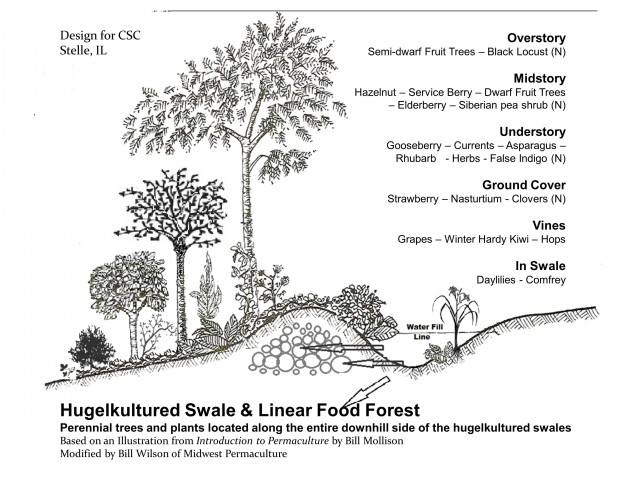 hugelculture swales permaculture sierra nevada california grass valley, ca
