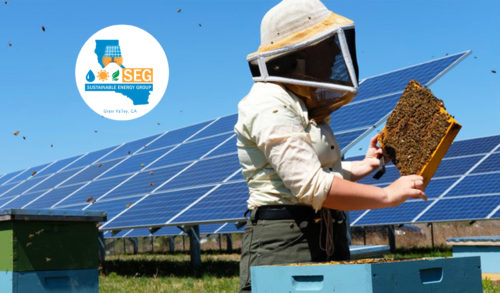 internship grass valley nevada city california solar sustainable energy