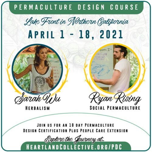 permaculture design course permaculture action now ryan rising california