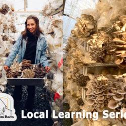 The Magic of Mushrooms – Mushroom Barn